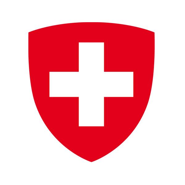 Junge Auslandschweizerinnen und Auslandschweizer fördern, fordern und vernetzen