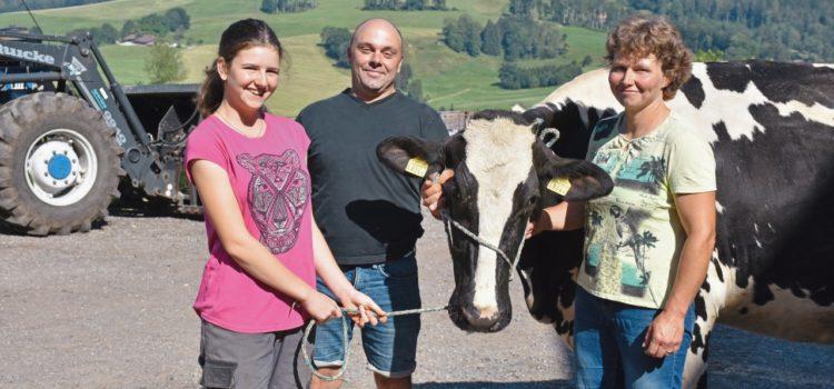 Acquisire in Svizzera un'esperienza di vita
