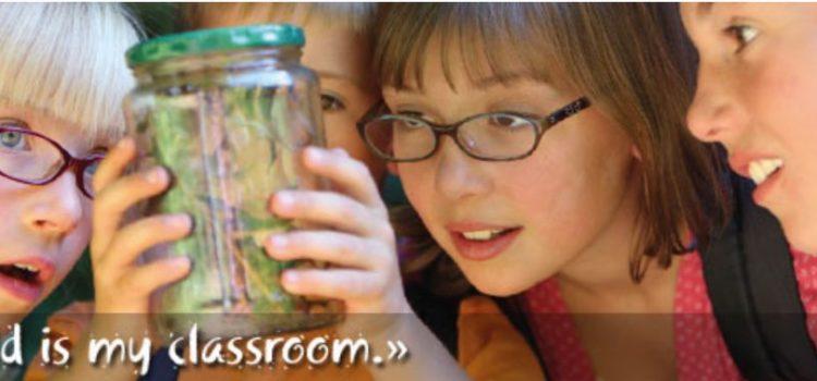 Homeschooling, bocciata o promossa?