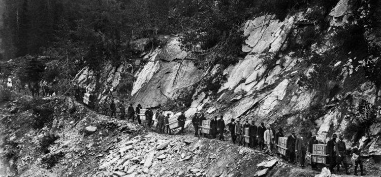 """Il """"re delle montagne"""" deve ai bracconieri il suo ritorno nelle Alpi"""